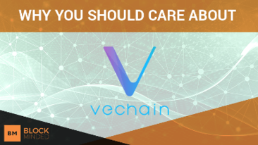 Vechain Coin Analysis