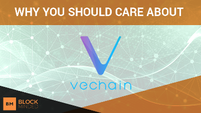 Why Should You Care About Vechain?